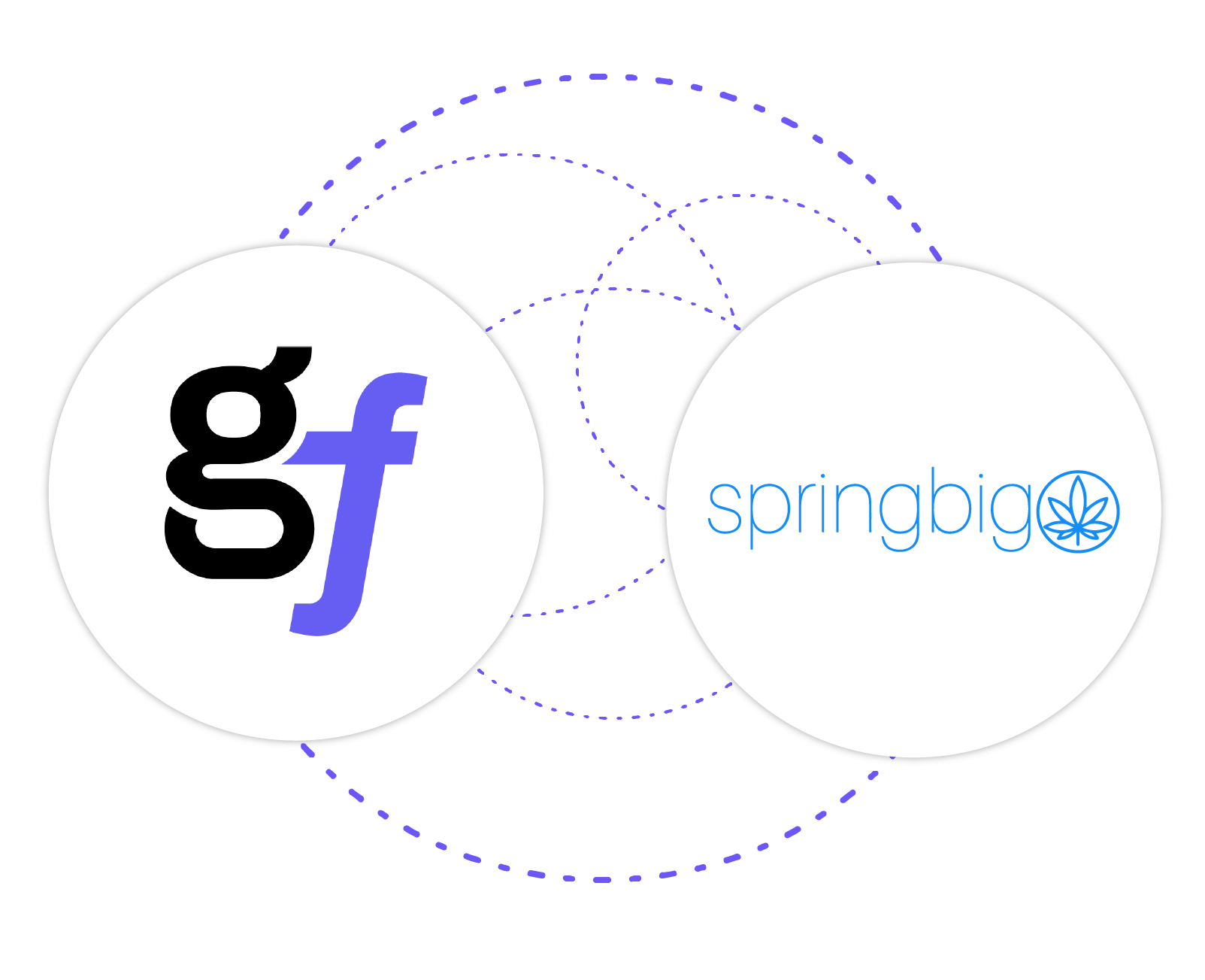 GrowFlow-Integrations-springbig